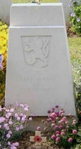 hanus alois headstone